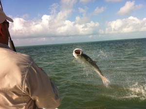 April flats fishing islamorada
